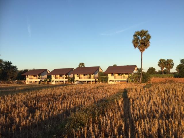 TC bungalows